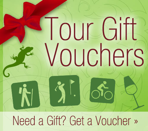 Gift Vouchers for Nelson Tours